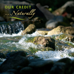 Our Credit Memberships