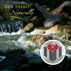 Our Credit Memberships Gifts
