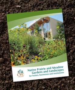 Native Prairie and Meadow Gardens and Landscapes