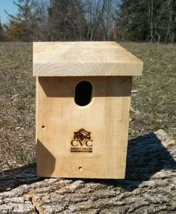 Eastern Bluebird Box