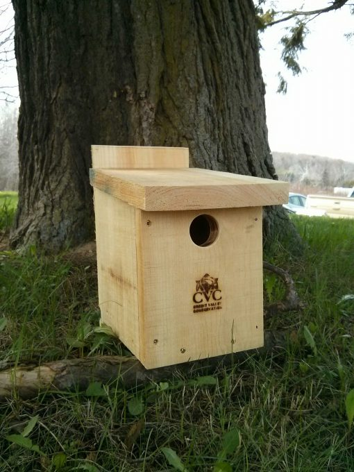 Great Crested Flycatcher Box