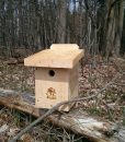 Tufted Titmouse Box
