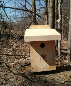 Red Breasted Nuthatch Box